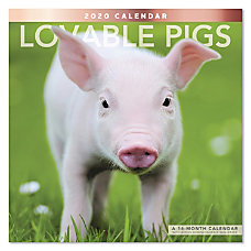 Mead Lovable Pigs Monthly Wall Calendar