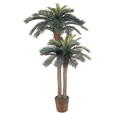 Nearly Natural 6'H Silk Double-Potted Sago Palm Trees With Basket, Green