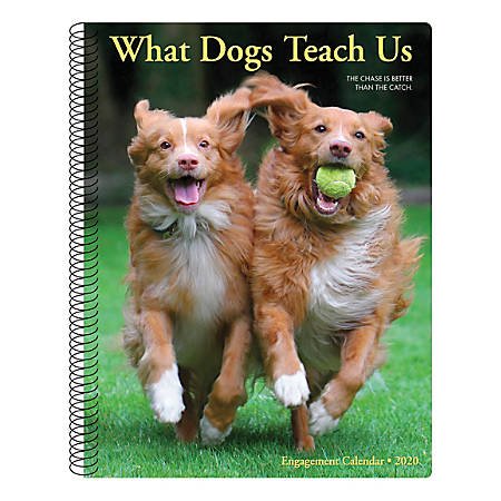 """Willow Creek Press Weekly Engagement Calendar, 7"""" x 9"""", What Dogs Teach Us, January to December 2020, 09321"""