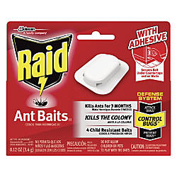 Raid Ant Baits Pack Of 4