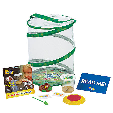 Insect Lore Butterfly Growing Kit With Live Caterpillars, Green