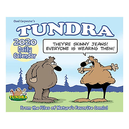 """Willow Creek Press Page-A-Day Daily Desk Calendar, 5-1/2"""" x 6-1/4"""", Tundra, January to December 2020, 08997"""