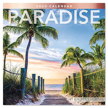 """Mead® Paradise Monthly Wall Calendar, 12"""" x 12"""", January to December 2020, ODE178-10"""