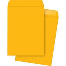Business Source Kraft Gummed Catalog Envelopes