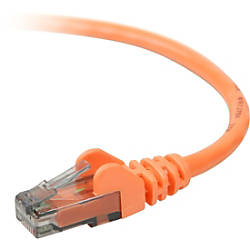 Belkin 900 Series Cat 6 UTP